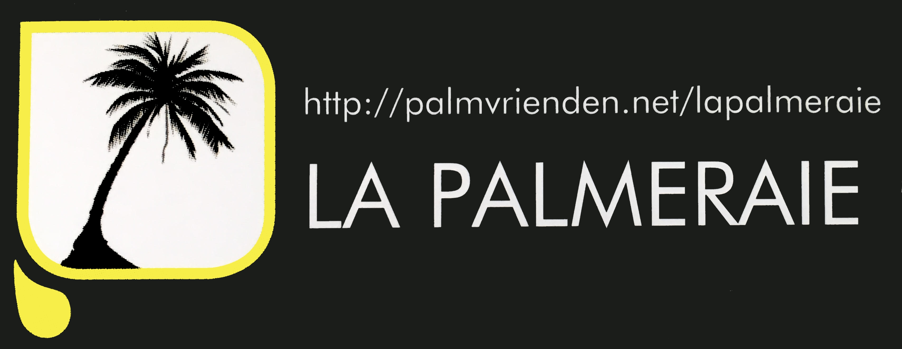 la palmeraie tout concernant les palmiers en belgique et