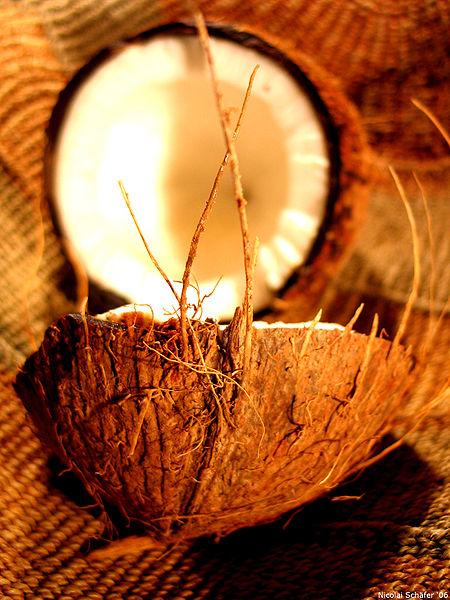 450px-Coconut_art_06