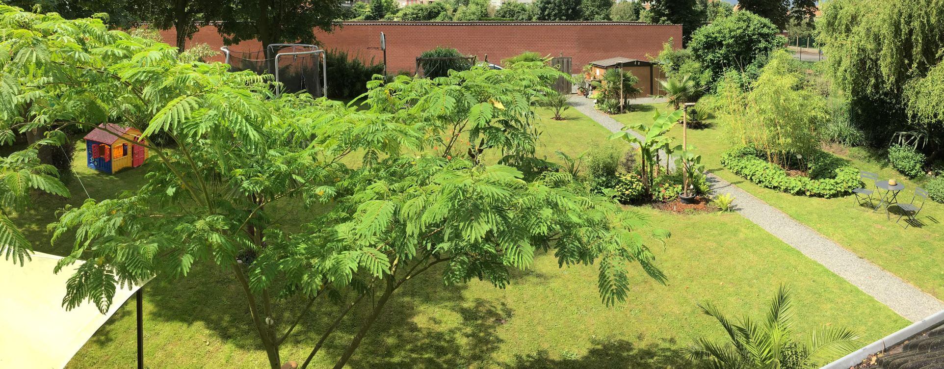 Jardins exotiques en belgique et aux pays bas la for Jardin belgique