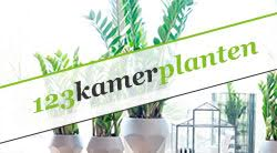 Kamerplanten webshop